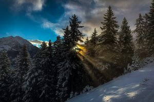 Lechtal - Benglerwald